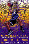 "Shaquille O'Neal ""Champion""  D-5  (Print)"