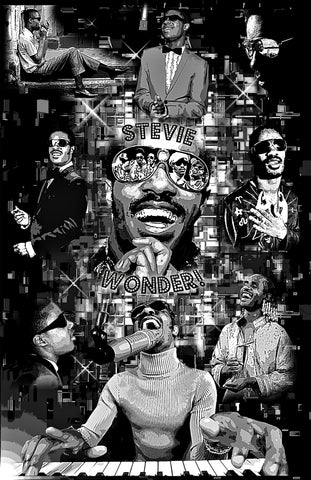 "Stevie Wonder ""Collage""  D-6"