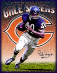 "Gale Sayers ""Tribute""  D-1"