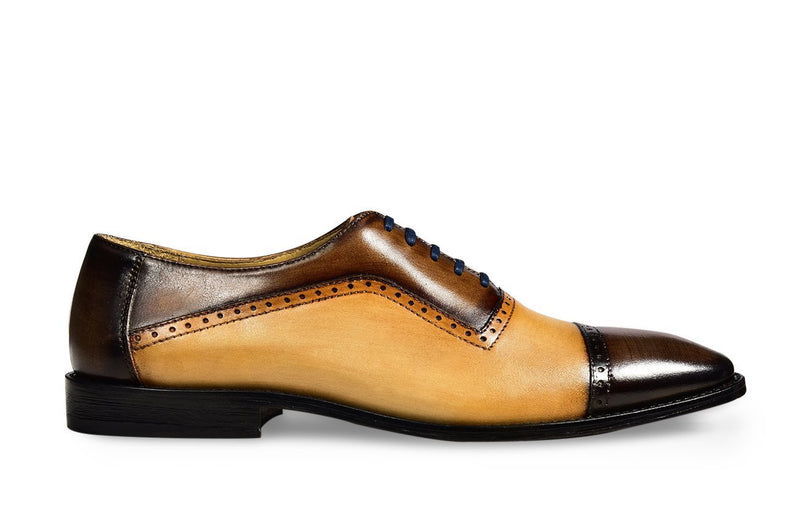 EXCLUSIF CAMEL FERTEL OXFORD