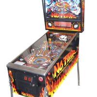 No Fear Pinball Machine