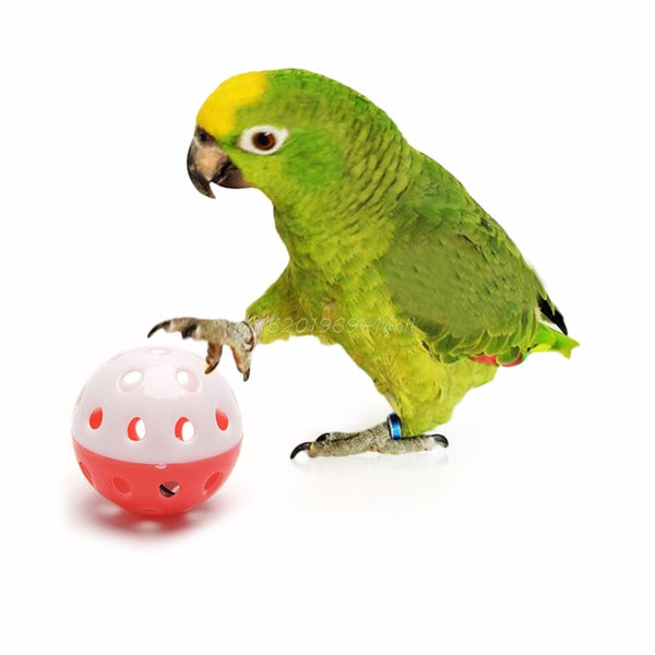 Parrot Toy Bird Hollow Bell Ball