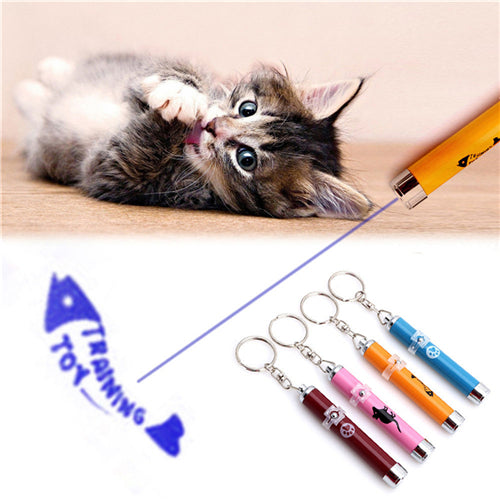 Creative Funny Pet LED Laser Toy