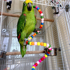 A new Parrot Toys