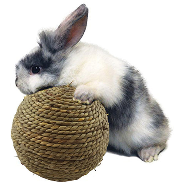 Small Pet Chewing Toy Natural Grass Ball