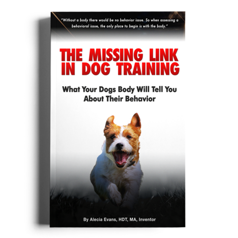 The Missing Link In Dog Training