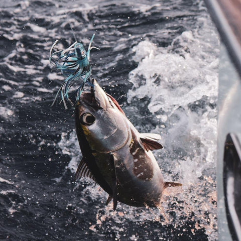 Blackfin Tuna Trolling Lures