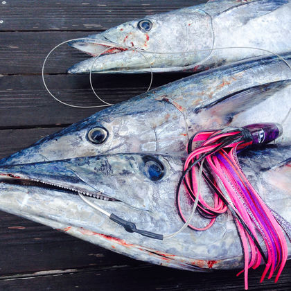 Fathom Offshore high speed wahoo trolling lures