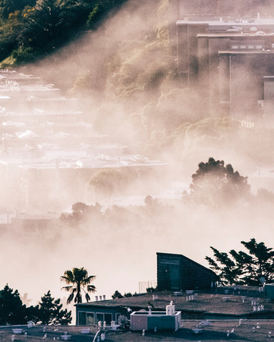 Twin Peaks and Palm Tree. Taken by SF based photographer Joe Keefe Available in L, XL and Grand.