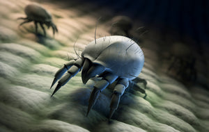 dust mites in baby mattress are bad and so are the chemicals to kill them.
