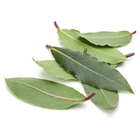 Bay leaves, bay leaves metaphysical, smudge bay leaves, magical bay leaves, smudging, smudge herbs
