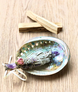 Abalone Shell Smudge Bowl - Sentient Creations