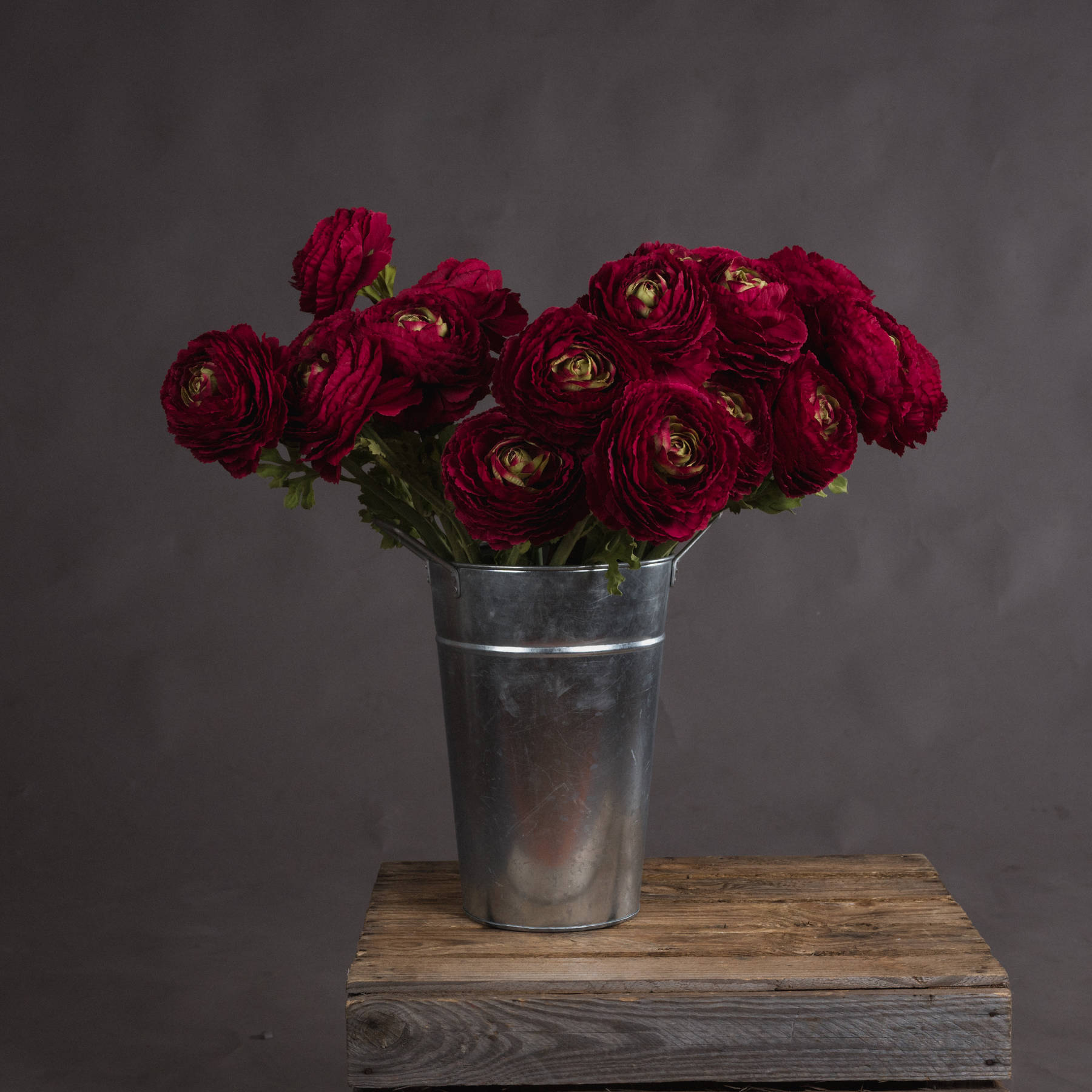 Red Ranunculus Spray