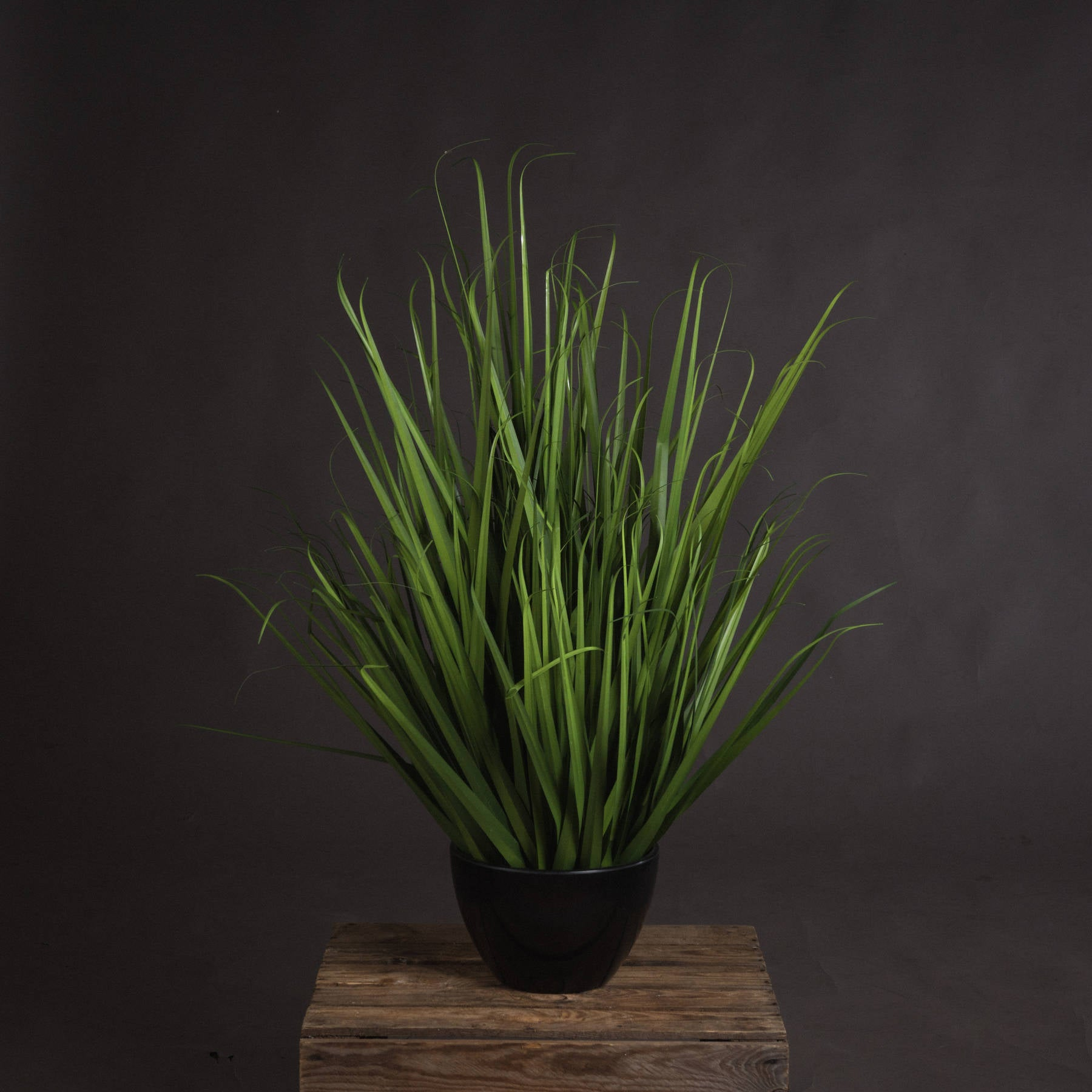 Large Field Grass pot