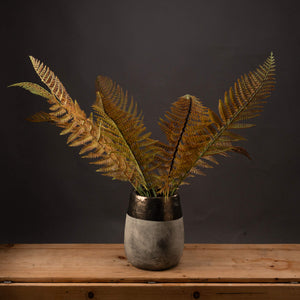 Single Autum Fern Stem