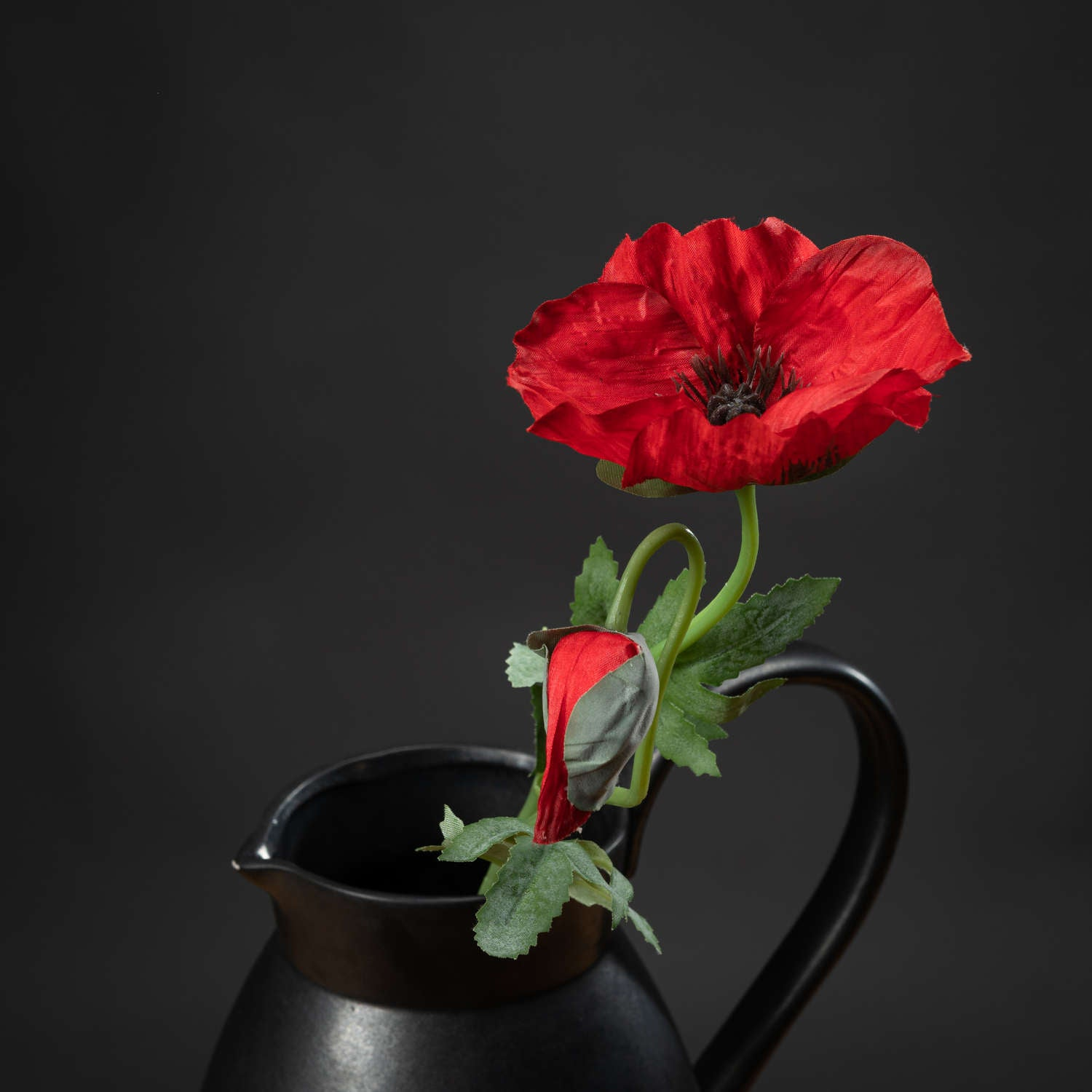 Traditional Red Poppy
