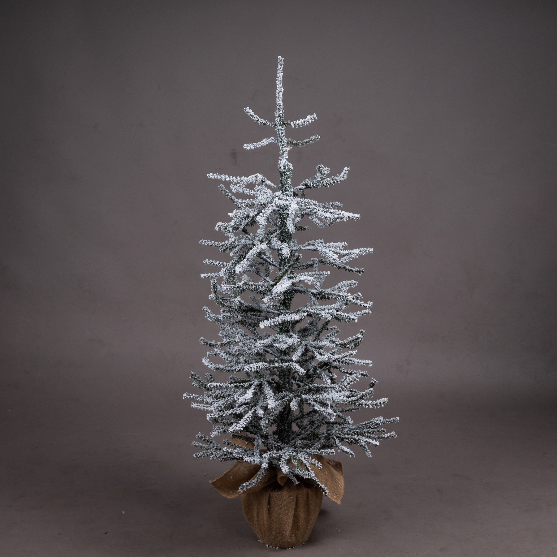 Medium Frosted Mini Tree