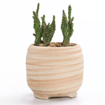 Load image into Gallery viewer, Essence of Nature Ceramic Plant Pot Set (6pcs)