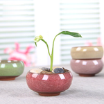 Load image into Gallery viewer, Ice Crack Glaze Ceramic Flowerpot (1Pcs)
