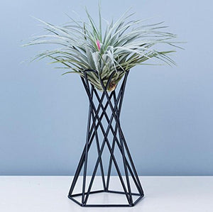 Iron Art Tabletop Metal Air Plant Holders