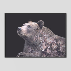 Grizzly Bear - Faunascapes Flower Portrait
