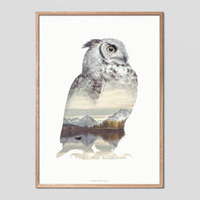 Load image into Gallery viewer, Owl - Faunascapes Double Exposure Poster
