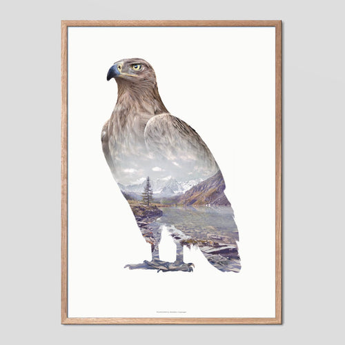 Brown Eagle - Faunascapes Double Exposure Poster