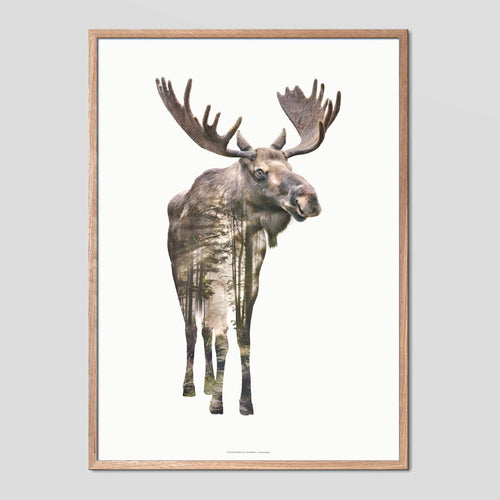 Moose - Faunascapes Double Exposure Poster