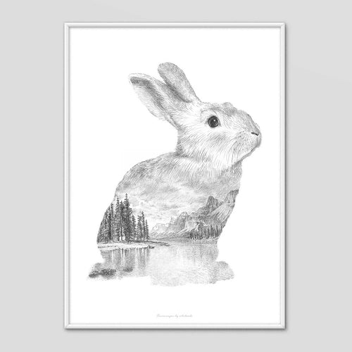 Rabbit - Faunascapes Pencil Drawing