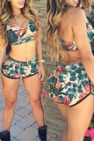 VogueRegion Coconut Tree  Printed Two-piece Swimwear - VogueRegion