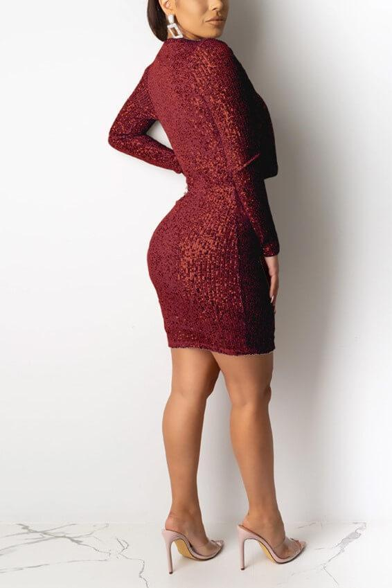 Sexy Sequined Long Sleeve Dress