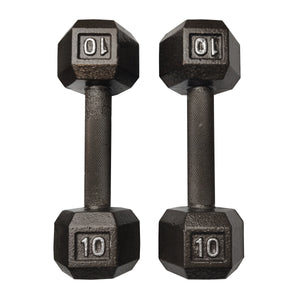 ISF 10LB Cast Iron Dumbbells w/ Knurled Handles by I Sell Fitness