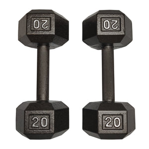 ISF 20LB Cast Iron Dumbbells w/ Knurled Handles by I Sell Fitness