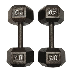 ISF 40LB Cast Iron Dumbbells w/ Knurled Handles by I Sell Fitness