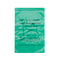 Patient Own Medication Bag Green 390 x 280 mm