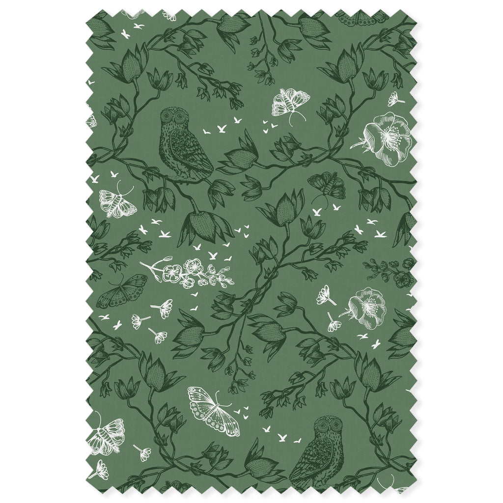 Orchid Owl / Sage Green