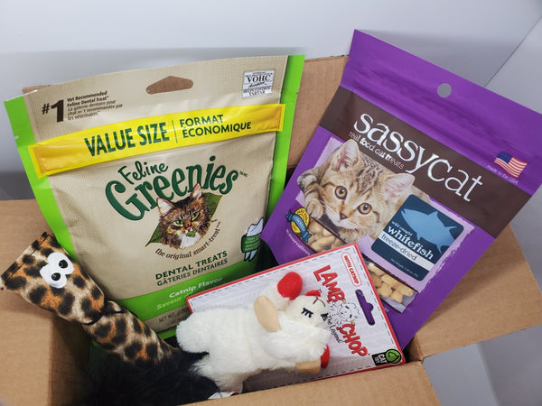 Cat Treat And Toy Sampler Pack