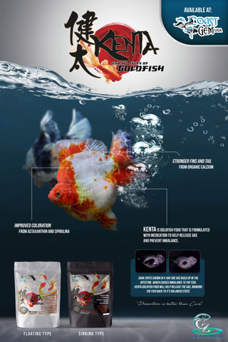 CZ AQUA Kenta for all types of goldfish 1.5mm 150gm