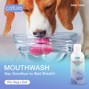 "Cature Persimmon ""Mouthwash"" Oral Care"
