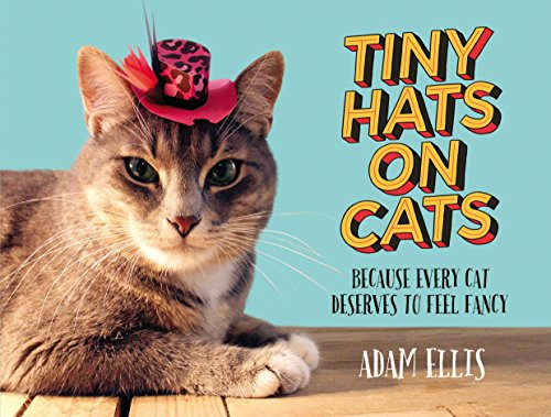 Tiny Hats on Cats: Because Every Cat Deserves to Feel Fancy - Catoro Cat Cafe