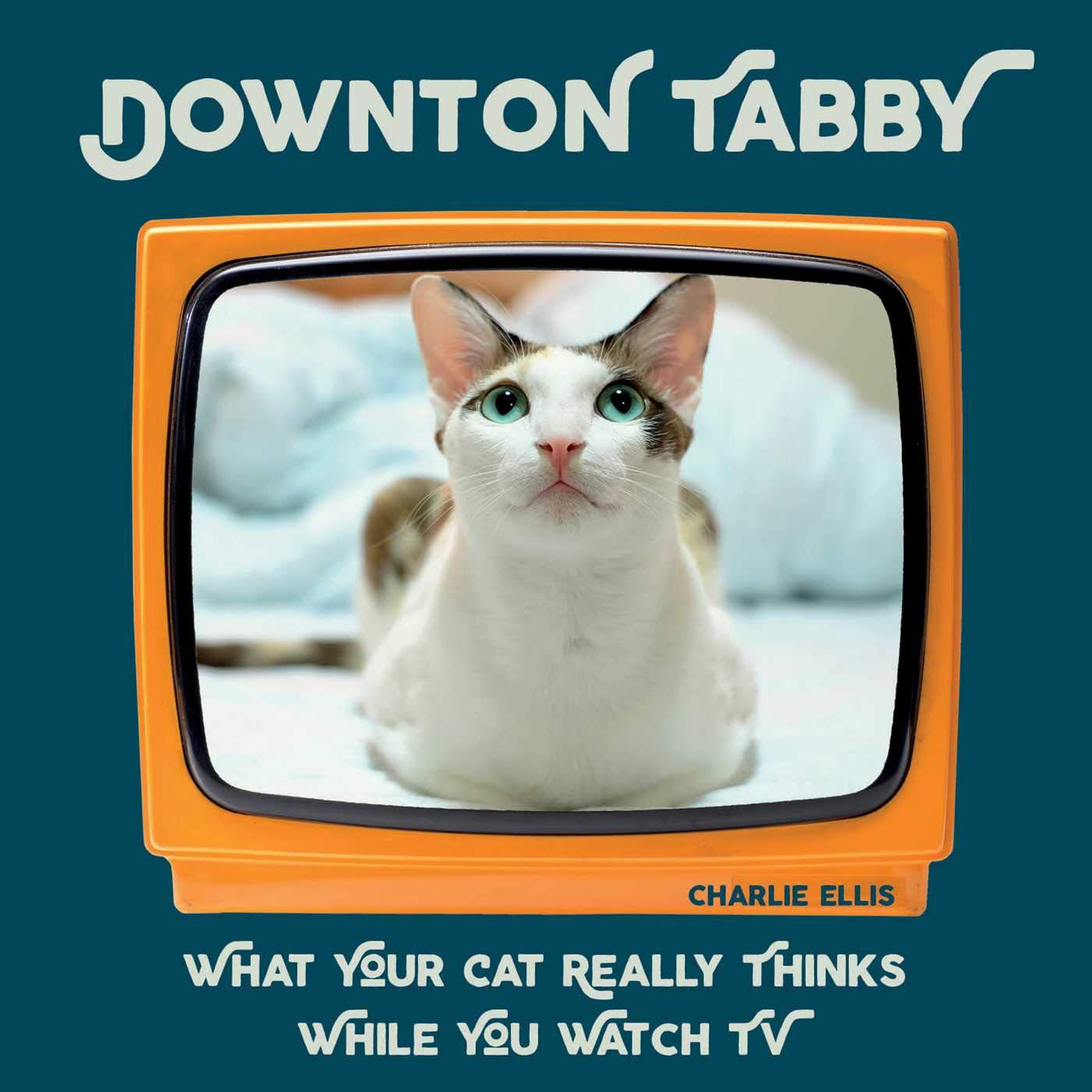Downton Tabby: What Your Cat Really Thinks While You Watch TV - Catoro Cat Cafe