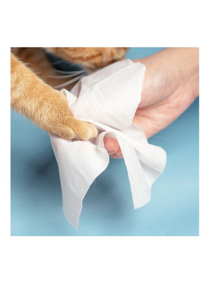 Pet Wet Wipes - 10 Packs / 10 Counts Per Pack - Catoro Cat Cafe