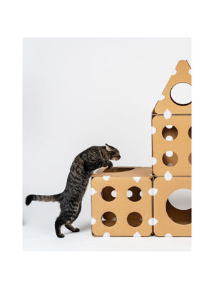 BOXKITTY Modular Cat House - Catoro Cat Cafe