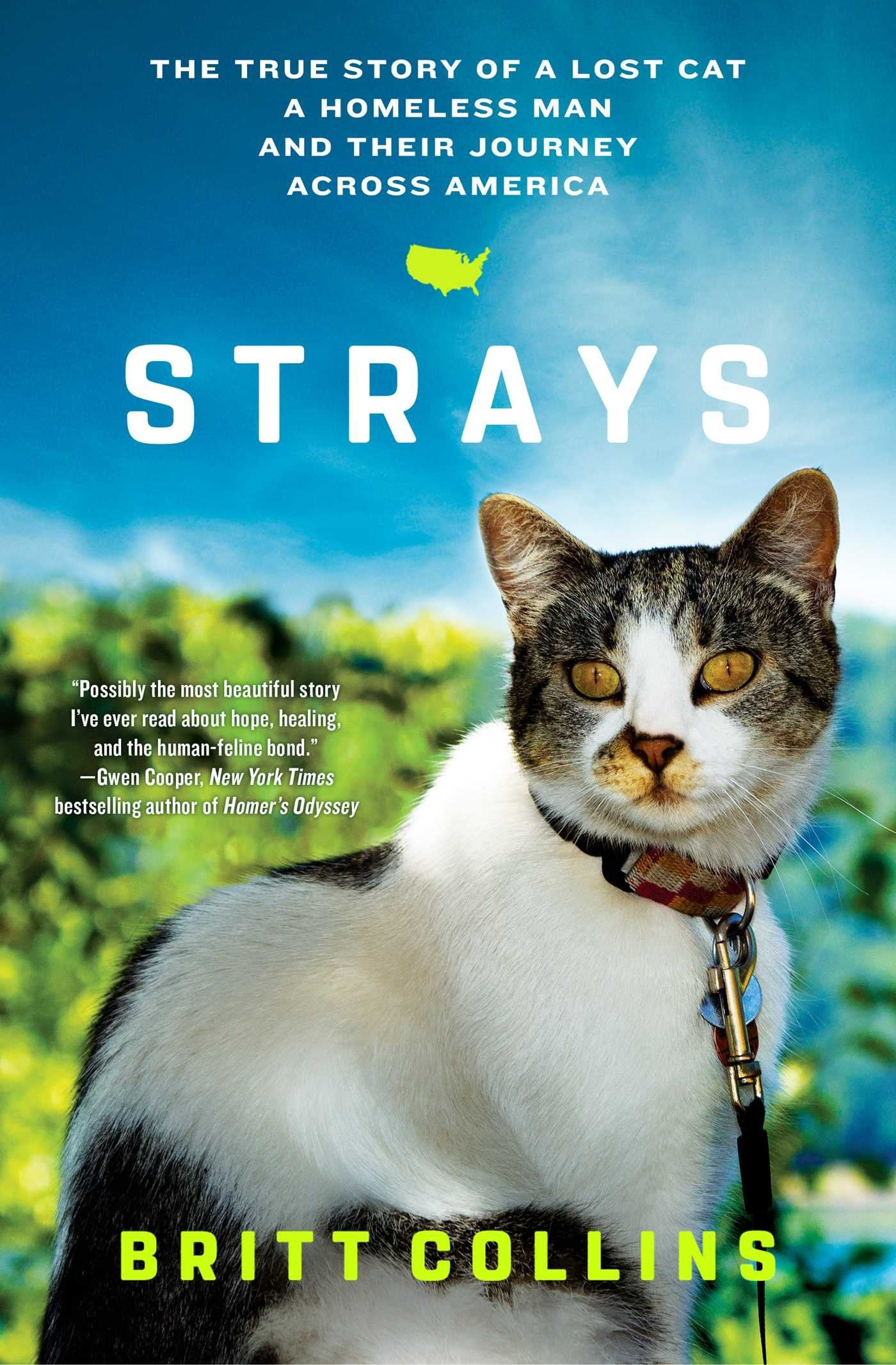 Strays: The True Story of a Lost Cat, a Homeless Man, and Their Journey Across America - Catoro Cat Cafe