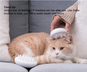 Pet Brush - Catoro Cat Cafe