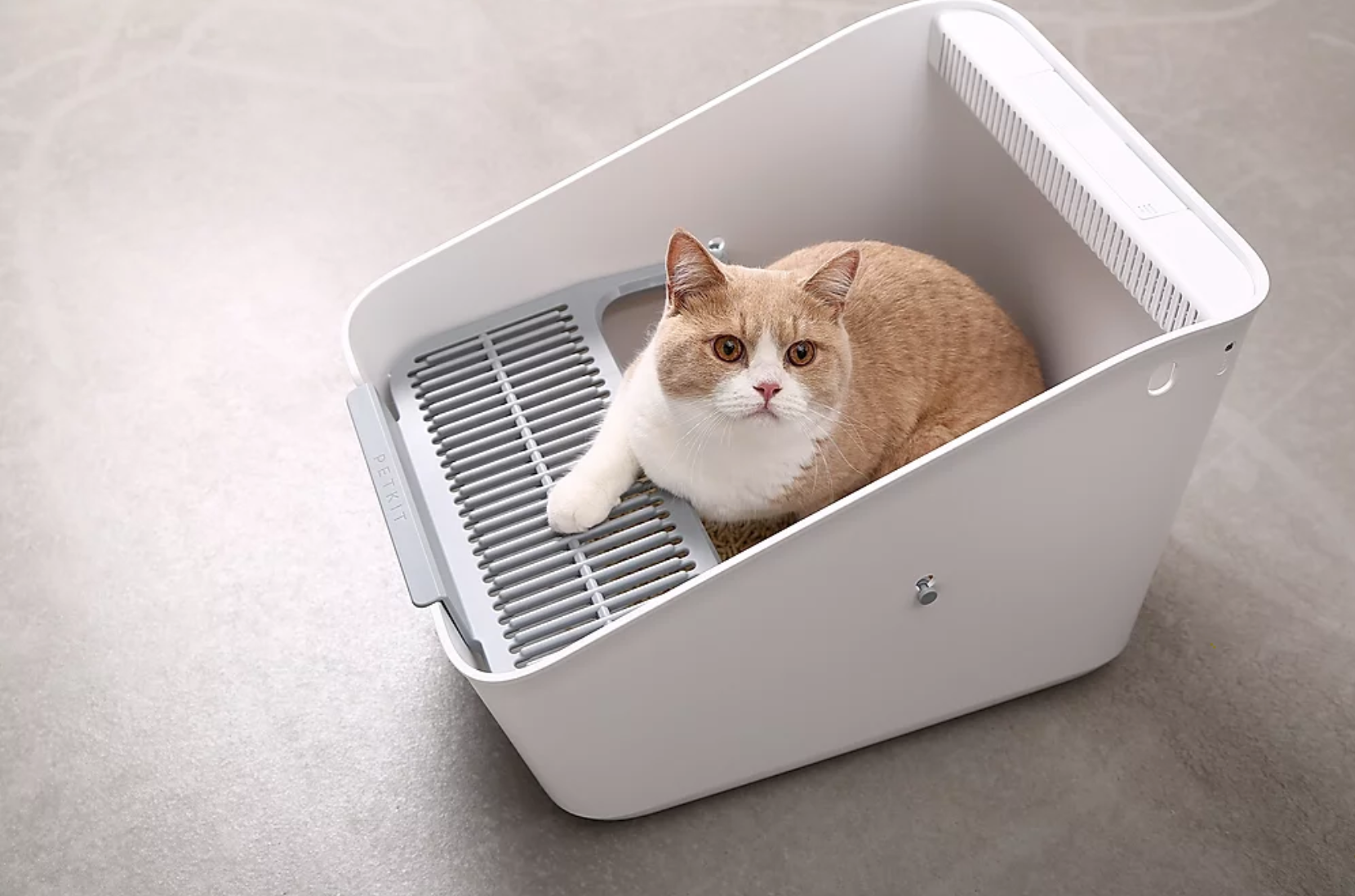 Petkit Pura Litter Box - Catoro Cat Cafe