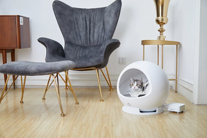Petkit Cozy Gen 2 Smart Pet Cave - Catoro Cat Cafe