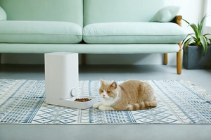 Petkit Fresh Element Mini Smart Pet Feeder - Catoro Cat Cafe