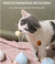 Balloon Cat Toy - Catoro Cat Cafe