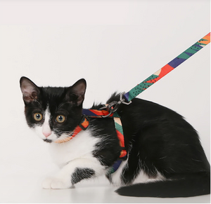 Cat Leash - Harness & Leash Set - Catoro Cat Cafe